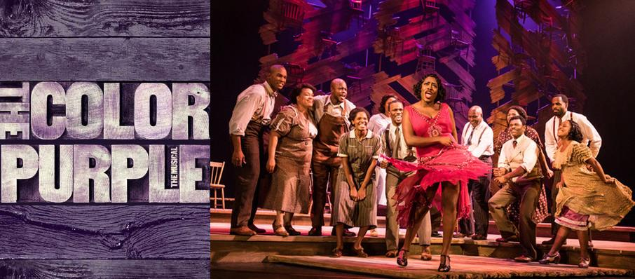 The Color Purple at The Aiken Theatre